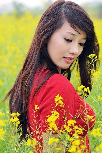 bán đất ở thạch bàn 2012, hoa cải, bán đất thạch bàn, ảnh girl bên hoa cải