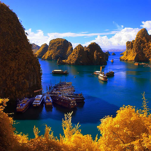 Cruise halong bay - tour vietnam - cruise halong bay nature
