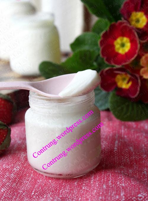 cách làm sữa chua - cach lam sua chua cuc ngon - lam sua chua